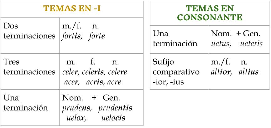 adjetivos de la segunda clase en latín